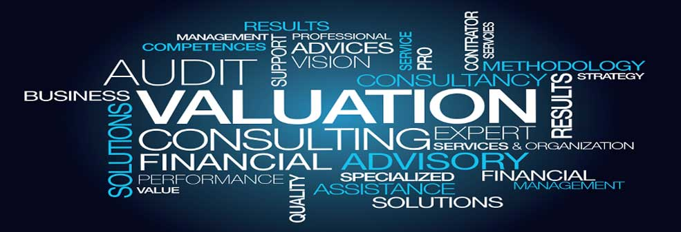 Business Valuation Services